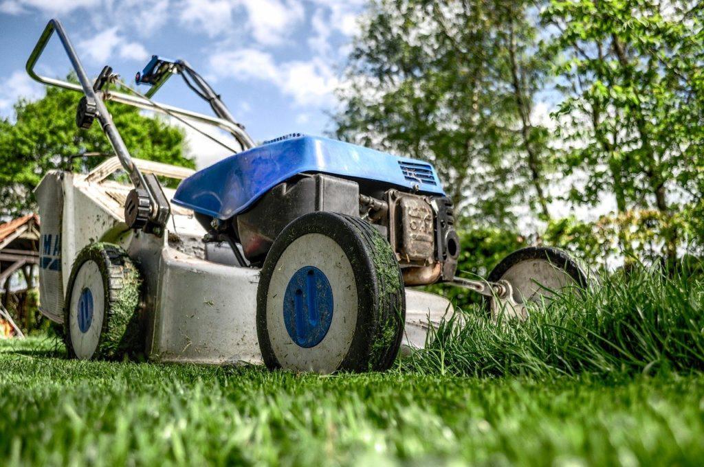 entretien de jardin locataire ou proprietaire